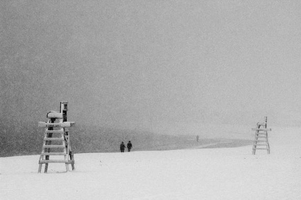 Snowy Walk, Connecticut